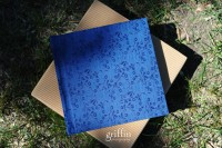 Finao 10x10 ONE in sapphire.