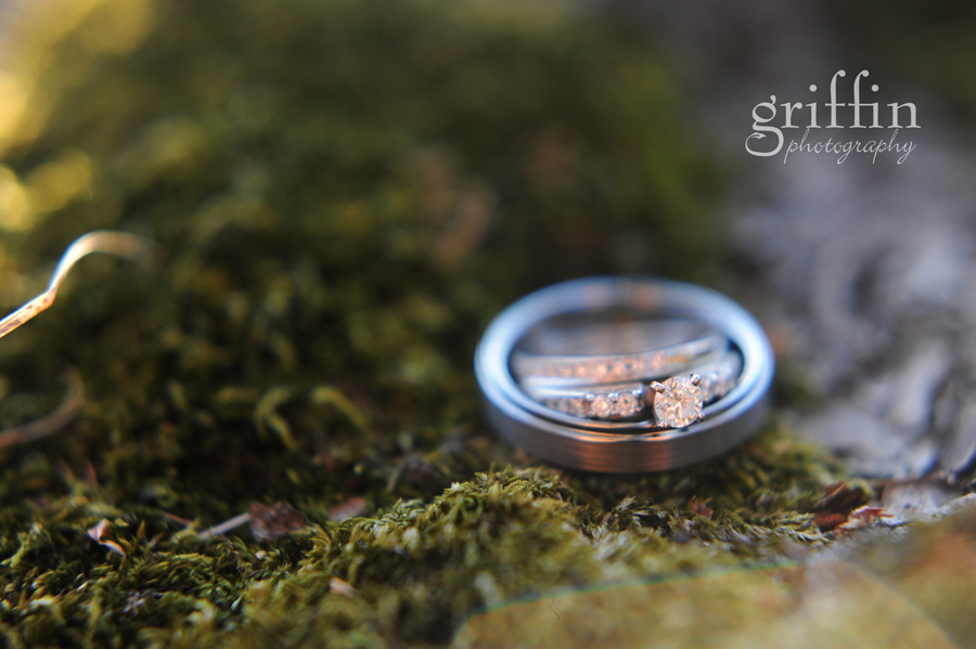 Wedding rings on a bed of moss.