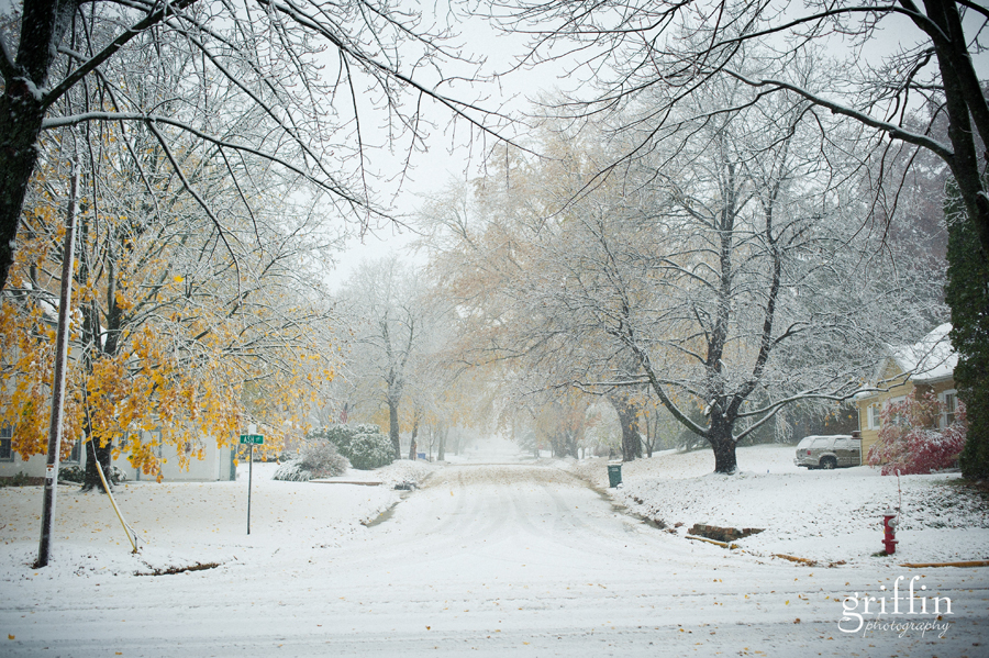 First snow of the 2011 winter season.