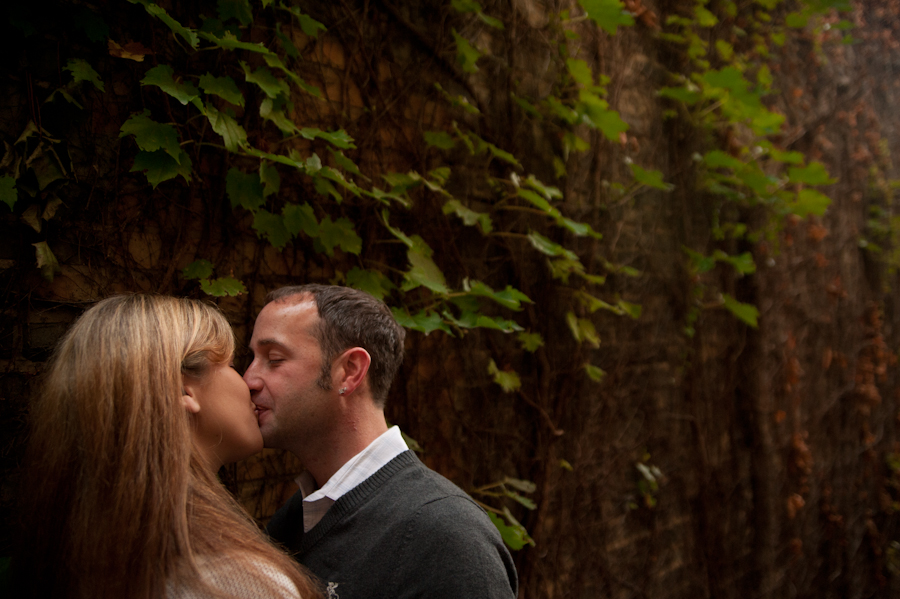Vines and leaves in a Baraboo back alley with the couple kissing.