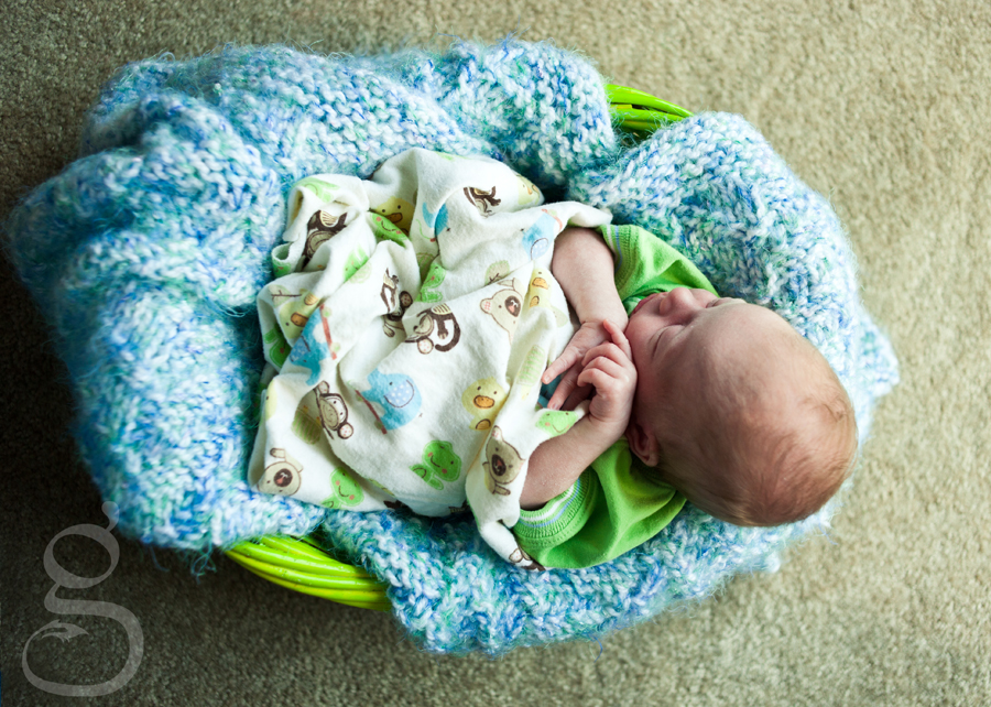 newborn in basket with blanket.