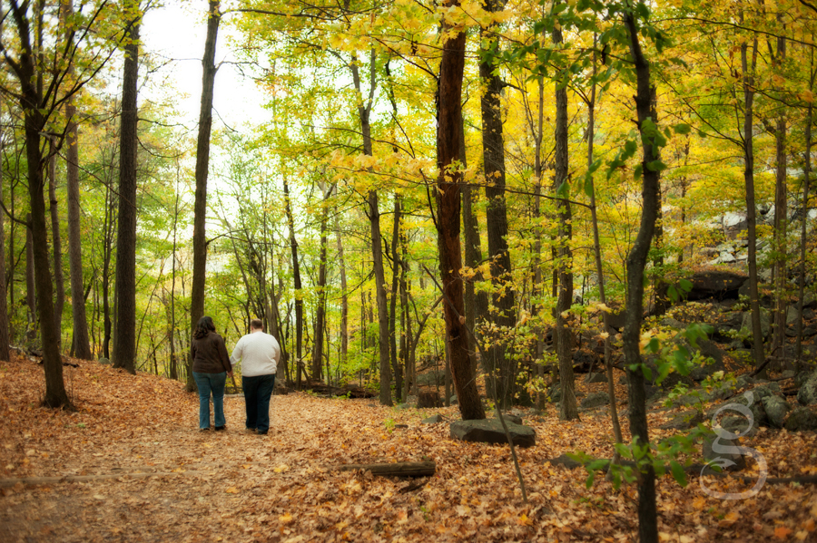 Trees towering above the couple as they walk down the leaf strewn path.