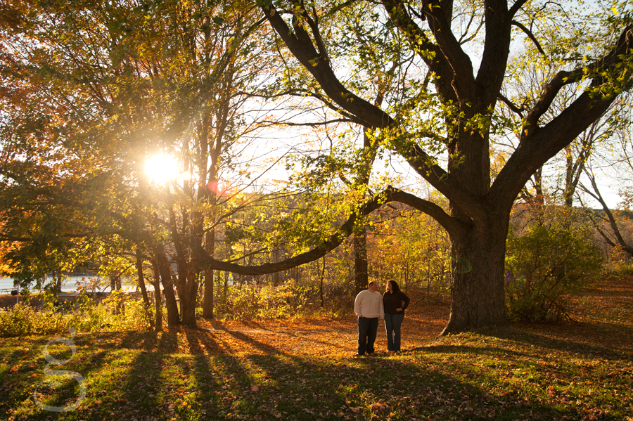 The sun shining through the branches casting long shadows across the grass as the couple looks at the camera.