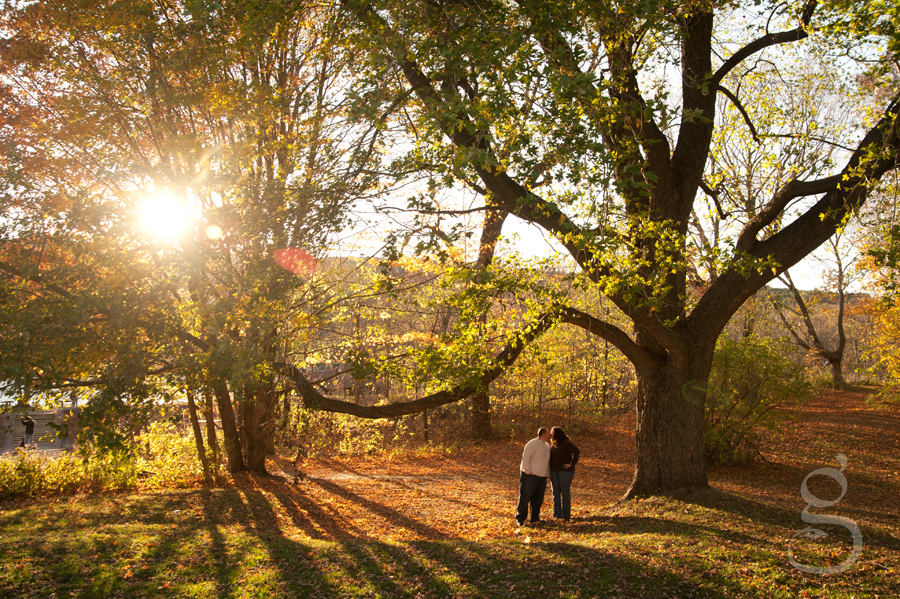 Couple kissing with the sun flare coming through the leafy canopy above.