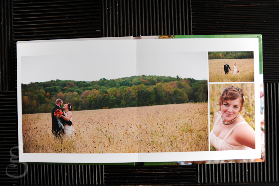 bride and groom in a field of grain in the album.