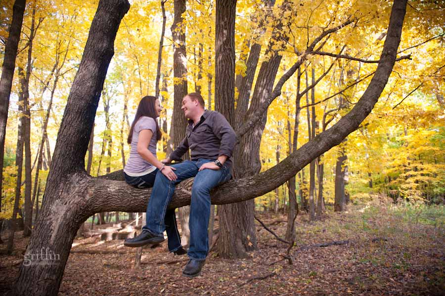 the engaged couple up in a tree