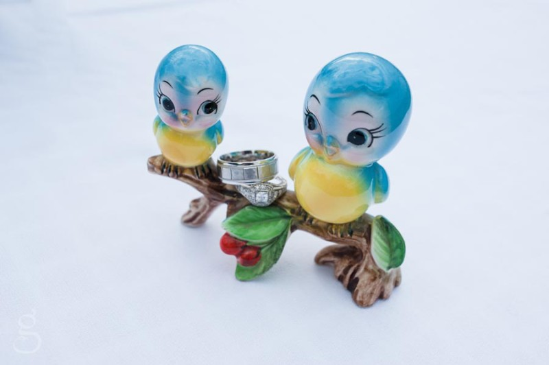vintage birds and creative ring shot.