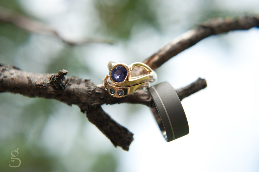 creative wedding ring shot, rings hanging on branch.