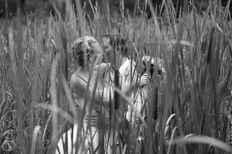 kissing through the grass.