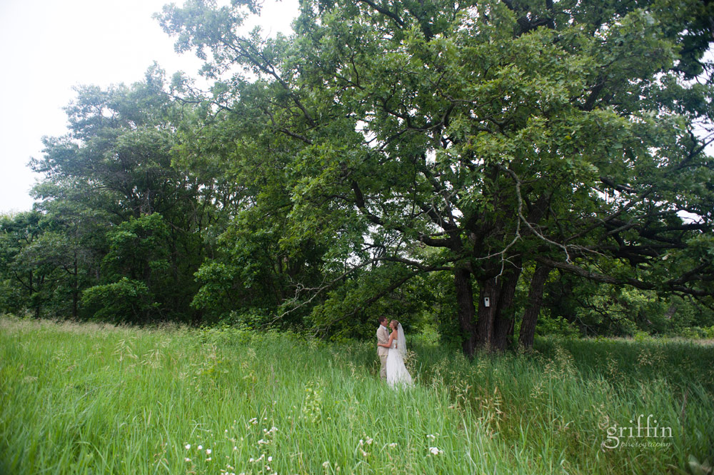 bride and groom in a green field of grass and a giant tree