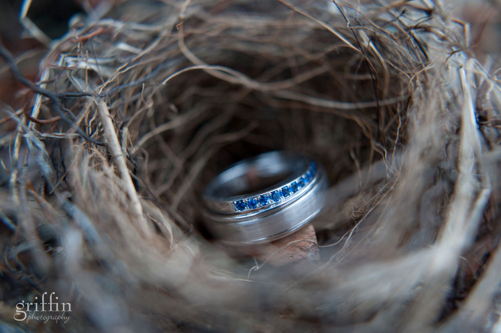 wedding rings macro shot inside bird nest