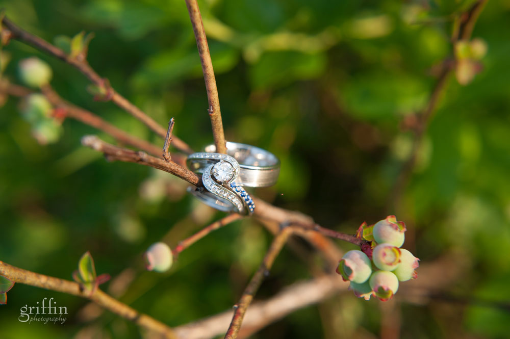 wedding rings on blackberry branch