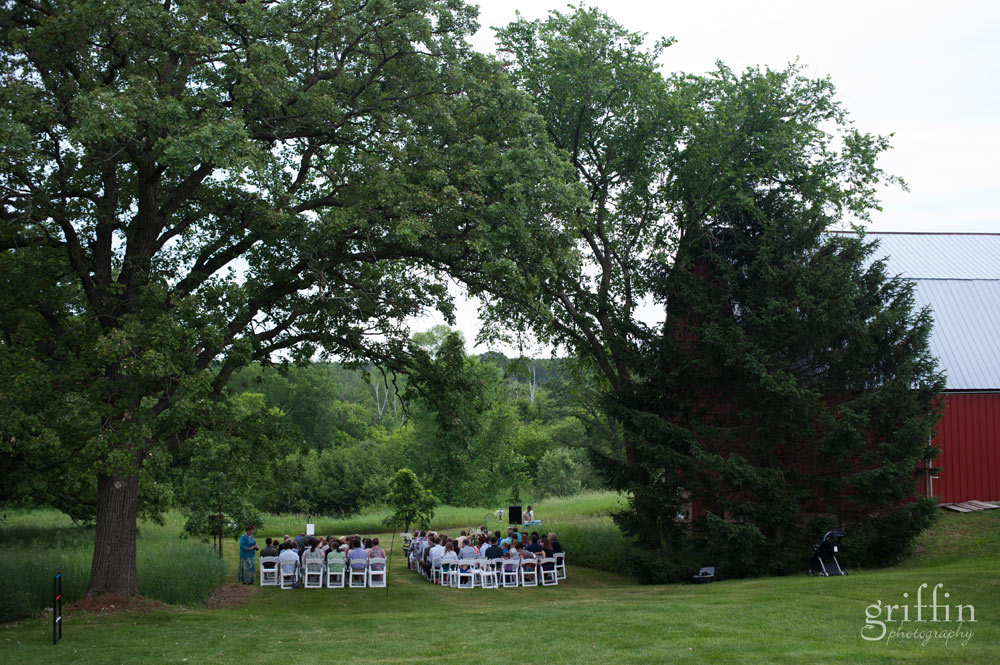 backyard wedding ceremony with giant spready trees