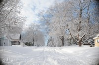 Unplowed street with snow covered trees in Baraboo Wisconsin.