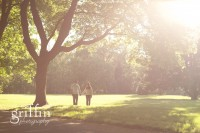 Sunflare on engaged couple holding hands under a huge Oak tree.