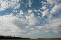 Gorgeous cloud studded sky during the engagement session.